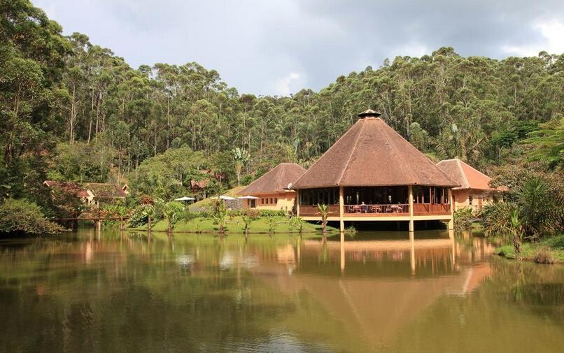 第五天:昂达西贝国家森林公园&图片